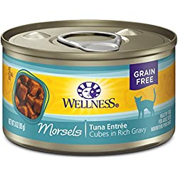 Wellness Complete Health Natural Grain Free Wet Canned Cat Food, Morsels Tuna Entrée, 3-Ounce Can (Pack Of 24)