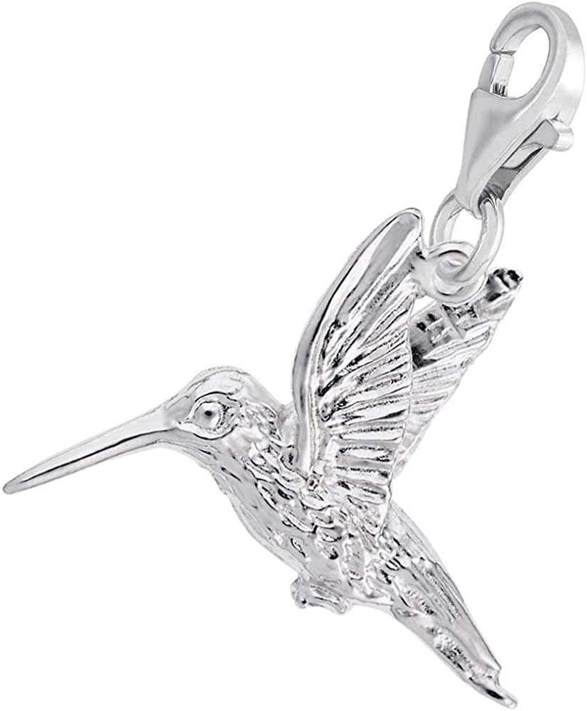 18 or 20 inch Rope Rembrandt Charms Two-Tone Sterling Silver Hummingbird Charm on a Sterling Silver 16 Box or Curb Chain Necklace