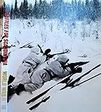 Battles for Scandinavia (World War II #28)