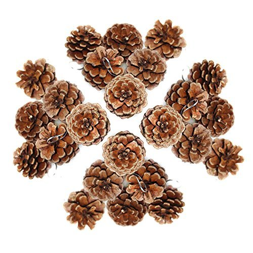 Peicees Natural Real Pine cones Hanging Ornaments for ChristmasampHome DecorationSet of 24