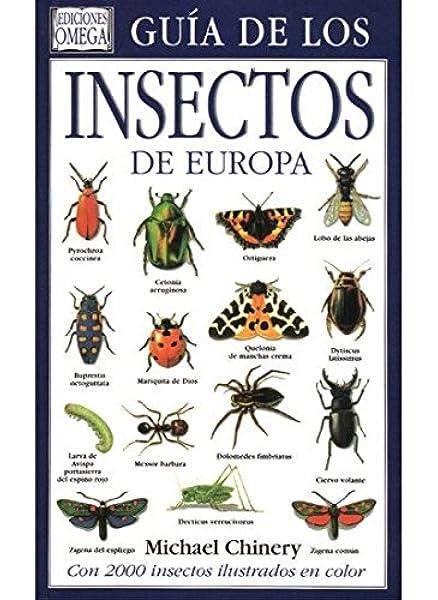 GUIA DE LOS INSECTOS DE EUROPA GUIAS DEL NATURALISTA-INSECTOS Y ARACNIDOS: Amazon.es: CHINERY, MICHAEL: Libros