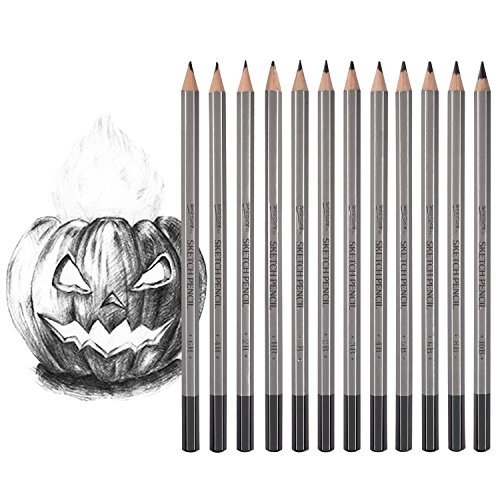 Dyvicl Art Sketching Pencils Set - 12 Pieces Drawing Pencils 10B, 8B, 6B, 5B, 4B, 3B, 2B, B, HB, 2H, 4H, 6H Graphite Pencils for Adults & Kid Artists from Dyvicl
