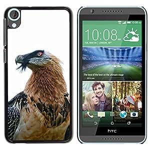 FlareStar Colour Printing Hawk Eagle Bird Nature White Beak Feather cáscara Funda Case Caso de plástico para HTC Desire 820