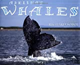 Adelina's Whales, Richard Sobol, 0525471103