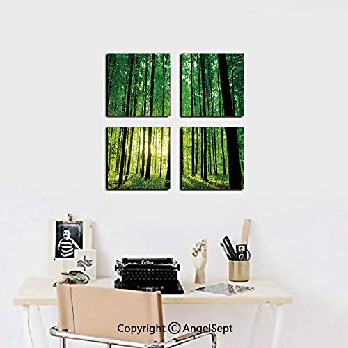 4 Piece Canvas Wall Art,Green Woodland at Sunrise Scenic Morning Nature Environment Ecology Serenity Decorative,12