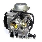 Carburetor for Honda 300 TRX300 FOURTRAX 1988-2000, Honda ATV Atc250SX Atc250SX Carb 1985-1987 by Amhousejoy