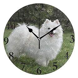 HangWang Wall Clock Cute Pet American Eskimo Dog Silent Non Ticking Decorative Round Digital Clocks Indoor Outdoor Kitchen Bedroom Living Room