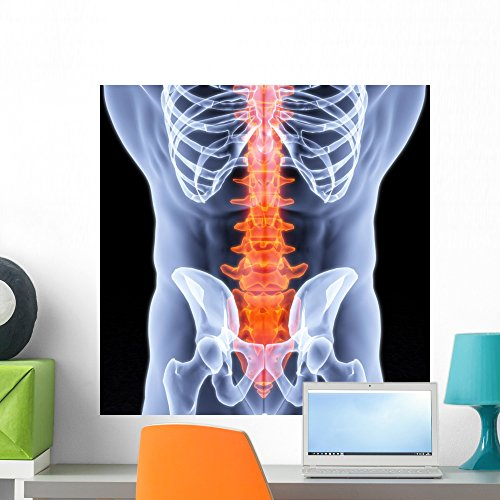 Wallmonkeys Spine Wall Decal Peel and Stick Graphic WM48865 (24 in H x 24 in - Graphic Spine