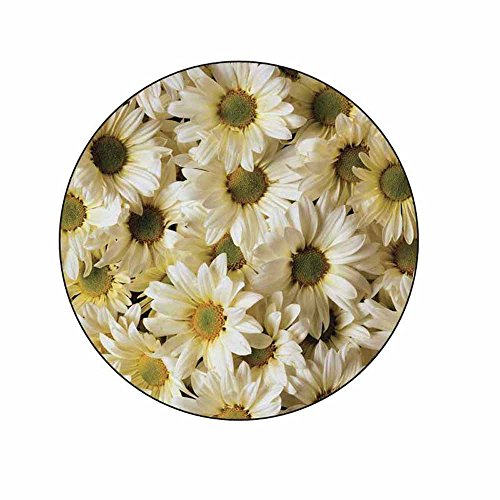 (Daisies Stickers - Gift Bag or Envelope Seals - Daisy Flowers Floral Theme Stationery Design - Party Favor Supplies - Set of)