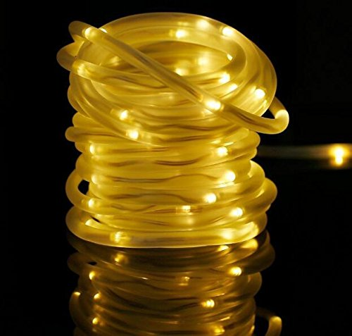 Solar 100 Led White Rope Lights in Florida - 9