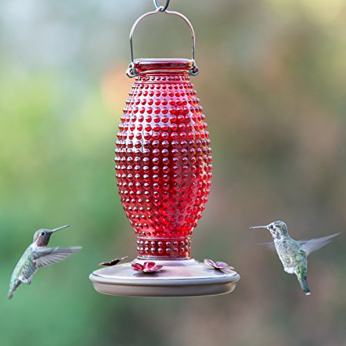 Perky-Pet Red Hobnail Vintage Glass Hummingbird Feeder 8130-2 by Perky-Pet (Image #4)
