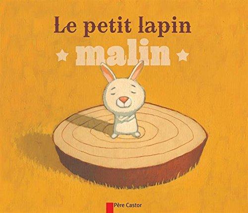 Les P'Tits Albums Du Pere Castor: Le Petit Lapin Malin (French Edition) pdf