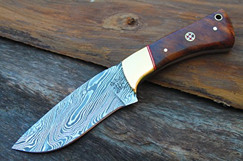 "Damascus Blade Handmade 4.1""Hunting knife w/ Walnut Wood, Br"