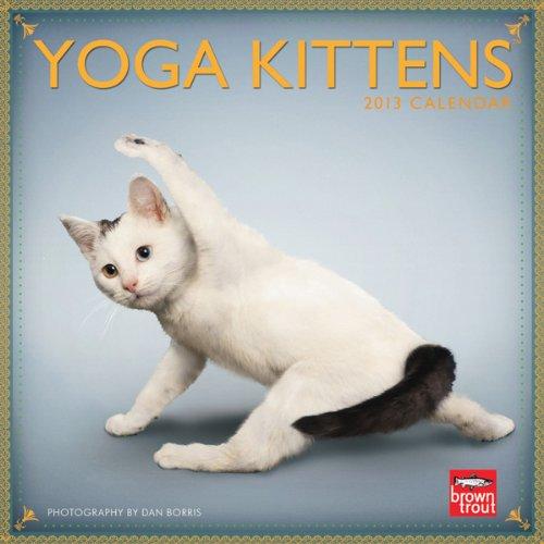 (Yoga Kittens 2013 Mini 7x7)