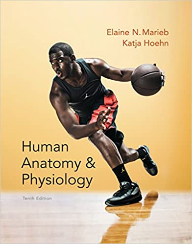 Human Anatomy & Physiology (Marieb, Human Anatomy & Physiology ...