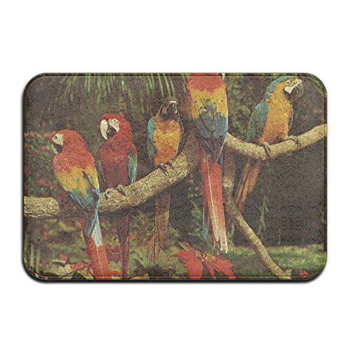 Natural Jungle Print (Parrot Jungle Miami Natural Tropical Picture Outside Door Mats 15.7 X23.6-Inches)