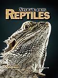 Reptiles, S. L. Hamilton, 1617839744