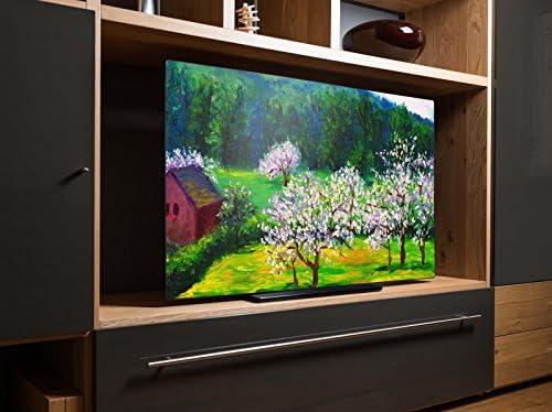 screencover – Protectora para televisor sin importar Marca, todos los tamaños pulgadas posible, material aluminio Dibond, con diseño de frutas prado en primavera: Amazon.es: Hogar