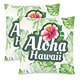 InterestPrint Hawaii Pillowcase Protector 18x18 Twin Sides, Tropical Leaves Zippered Pillow Case Covers Decorative, Set of 2