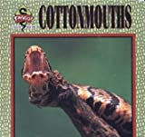 Cottonmouths (Fangs! an Imagination Library Series)