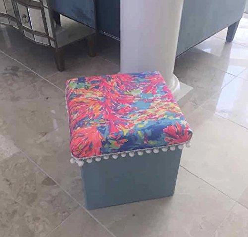 Phenomenal Amazon Com Blue Storage Ottoman Lilly Pulitzer Palm Beach Inzonedesignstudio Interior Chair Design Inzonedesignstudiocom