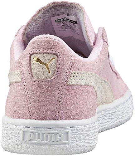 Para Rose Niños Jr Zapatillas Unisex Suede Puma B7RSwx0R