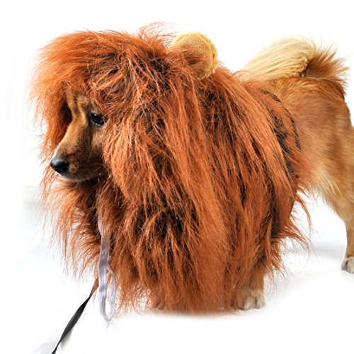 Popular Lion Mane Wig with Ear Costume Cloth Hat Fancy Dress For Pet (Simba Costume For Dog)