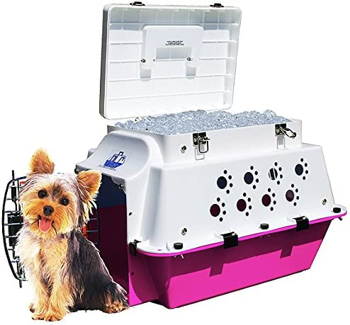 Pet Cooler Carrier Premium Cool for ALL Seasons Cooling, Hydration, Storage, Sturdiness Style.