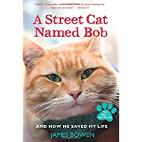 Image for A Street Cat Named Bob: And How He Saved My Life