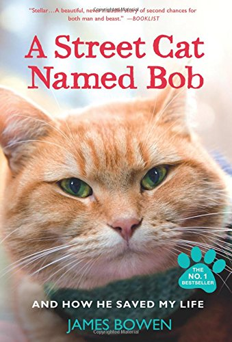 a-street-cat-named-bob-and-how-he-saved-my-life