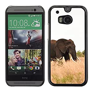 Paccase / SLIM PC / Aliminium Casa Carcasa Funda Case Cover para - Elephant Africa Nature Summer Tusk - HTC One M8