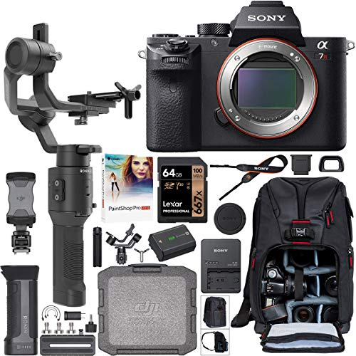 Sony a7R II Full-Frame Alpha Mirrorless Camera 42.4MP Body a7RII ILCE-7RM2/B Filmmaker's Kit with DJI Ronin-SC 3-Axis Handheld Gimbal Stabilizer Bundle + Deco Photo Backpack + 64GB Card + Software