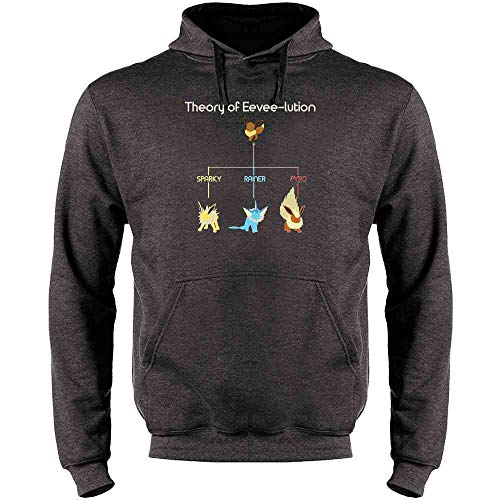 Theory of Eevee-lution Heather Charcoal Gray L Mens Fleece Hoodie Sweatshirt ()