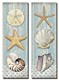 Beautiful Spa Shells; Conch, Starfish, Sand Dollar; Two 6x18in Mounted Prints; Ready to hang!