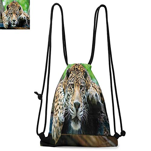 - Jungle Drawstring backpack series South American Jaguar Wild Animal Carnivore Endangered Feline Safari Image Convenient choice for daily activities W17.3 x L13.4 Inch Orange Black Green