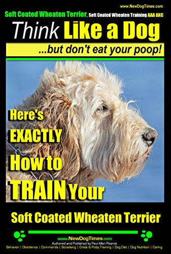 Wheaten Terrier Secrets: How to Raise Happy and Healthy Wheaten Terriers
