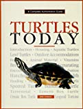 Turtles Today (Complete Authoritative Guide)