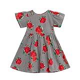 SMALLE Baby Girls Dress, Summer Newborn Infant KidsToddle Floral Print Cartoon Short Sleeve Clothes Princess Dress Skirt