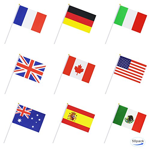 TSMD International World Stick Flag,50 Countries Hand Held