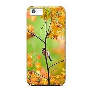 New Design Shatterproof QkmAvLW2217CxCYK Case For Iphone 5c (autumn Tree Pretty Bird)