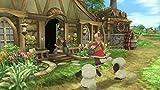 Namco Rune Factory Frontier