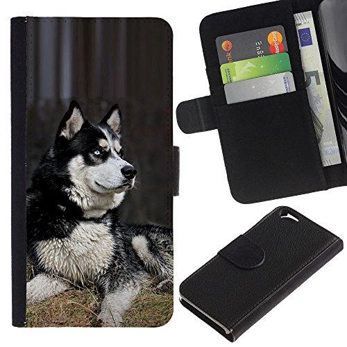 EuroCase - Apple Iphone 6 4.7 - husky Siberian dog sledge polar - Cuir PU Coverture Shell Armure Coque Coq Cas Etui Housse Case Cover