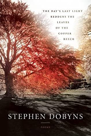 book cover of The Day\'s Last Light Reddens the Leaves of the Copper Beech