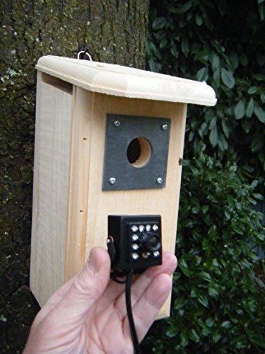 Birdhouse Spy Cam HD Backyard Backyard Birdhouse with Hawk Eye HD Nature Cam installed (Birdhouse Camera)