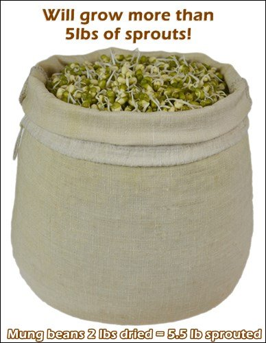 Hemp-Nut-Milk-Bag-Truly-100-Natural-Read-our-Fake-Organic-Warning-Sewn-with-Linen-flax-Threads-much-stronger-than-cotton-naturally-antibacterial
