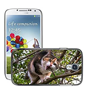 Super Stella Slim PC Hard Case Cover Skin Armor Shell Protection // M00144573 Cat Climb Aesthetic Lucky Cat // Samsung Galaxy S4 S IV SIV i9500