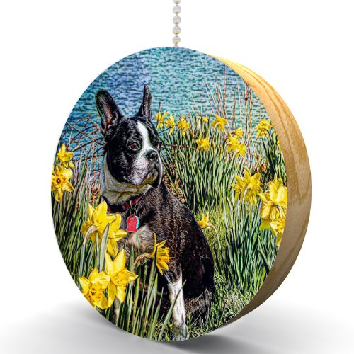 Boston Terrier in Daffodils Hardwood Oak Fan / Light