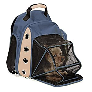 Amazon.com : Expawlorer Mesh Dog Carrier Backpack with Double ...