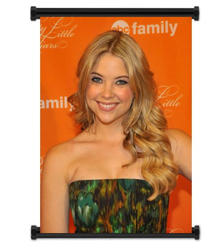 Pretty Little Liars TV Show Ashley Benson Fabric Wall Scroll Poster (16
