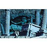 Roman Greek Aquarium Fish Tank Background - 60cm height - 120cm Length - All Pond Solutions